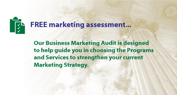 Free Business Marketing Audit