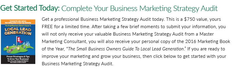 Business Marketing Strategy Audit - CTA