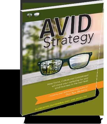 Avid Strategy