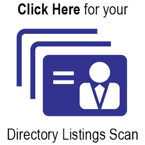 MarketBlazer Directory Listings Scan